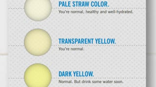 Yellow Urine After Drinking Lemon Water