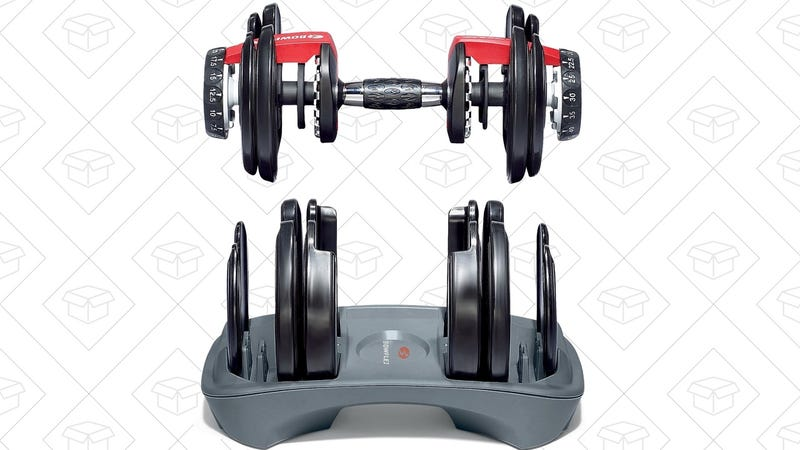 Bowflex SelectTech Adjustable Dumbbells (Pair), $250