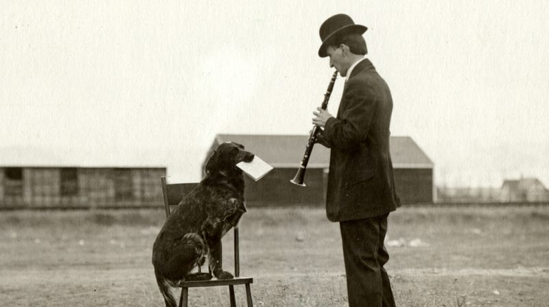 Musician Fred Campbell is helped out by his dog Shine, circa 1960.
