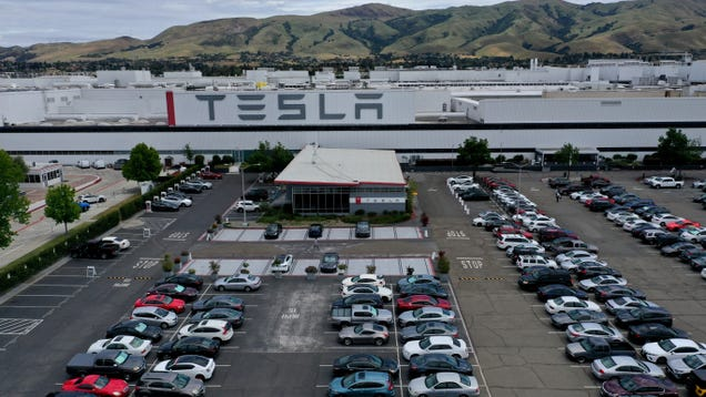 Tesla Factory Inspected by Police While It s Supposed to Be Shut Down, Elon Not Arrested