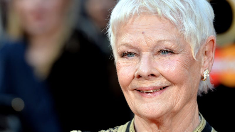 Illustration for article titled Judi Dench to lord overCats'star-studded felines, likely as the ancient OldDeuteronomy