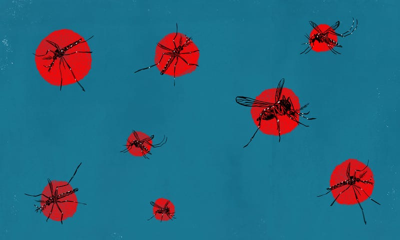 Illustration for article titled It's Time to Declare War on Mosquitoes