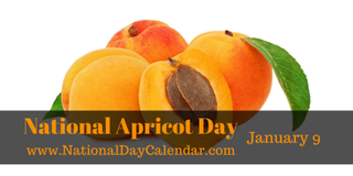 Illustration for article titled NATIONAL APRICOT DAY – NATIONAL STATIC ELECTRICITY DAY