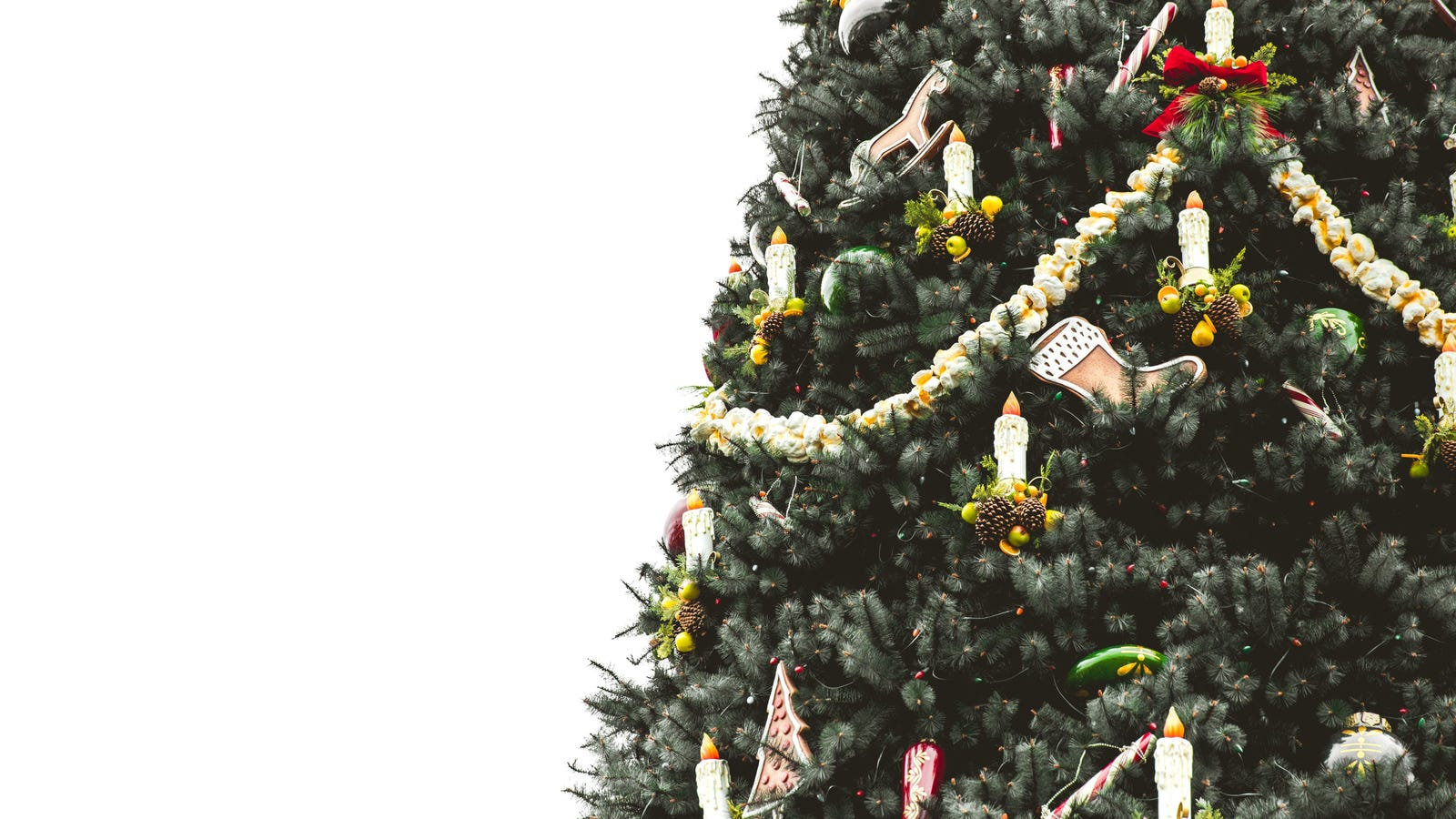How to Keep Your Christmas Tree Alive Through the Holidays