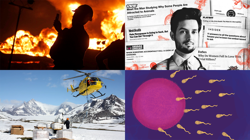 Clockwise from top left: Photo: AP; Illustration: GMG Art / Damien Sendler; Illustration: Maria Mellor (Flickr, CC BY 2.0); Photo: Keith Springer