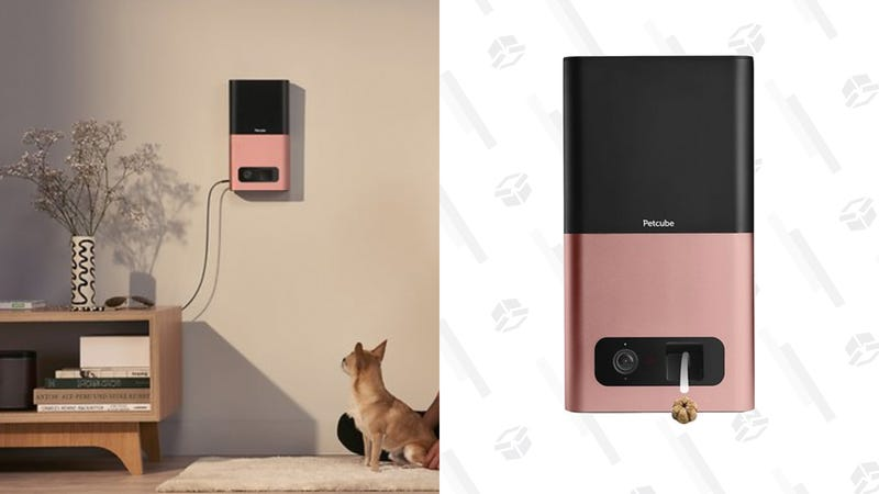 Petcube Bites Wi-Fi Pet Camera & Treat Dispenser | $130 | Chewy | Discount applied at checkout