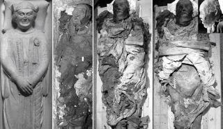 Illustration for article titled 700-Year-Old Cold Case Clue Found in Mummy Poop