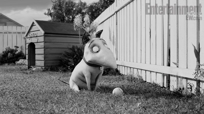 Illustration for article titled First look at Tim Burton's undead poochie movie, Frankenweenie
