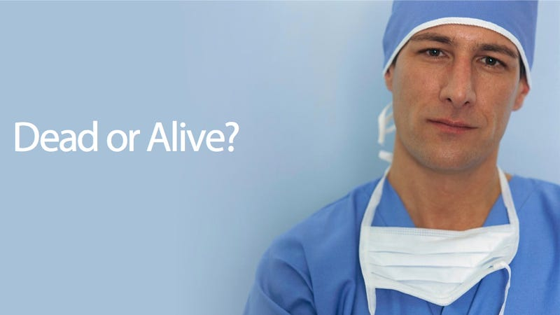 What is your opinion on organ donation?