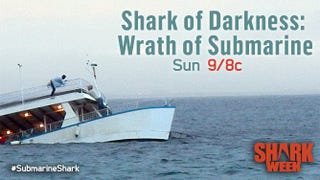 Illustration for article titled Shark WEAK