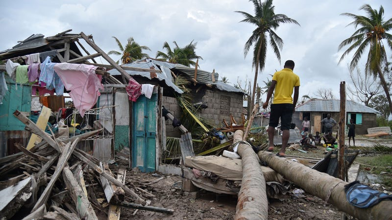 A young man walks on a palm tree in front of a destroyed house after Hurricane Matthew, in Croix Marche-a-Terre, in Southwest Haiti, on October 6, 2016. Hurricane Matthew has claimed at least 108 lives in Haiti, Interior Minister Francois Anick Joseph told AFP Thursday