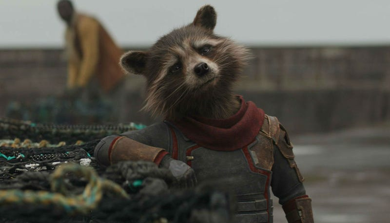Everyone's favorite trash panda, seen here in Endgame, is likely to feature prominently in Guardians of the Galaxy Vol. 3.
