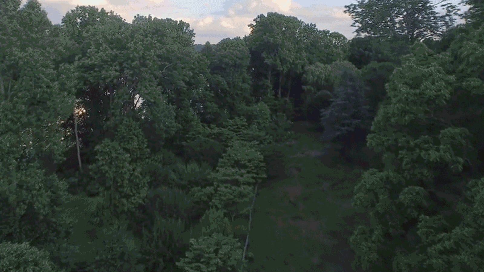 Fast-Forward Through Two Years of Stunning Seasonal Changes With This Drone Timelapse