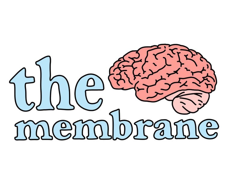 Illustration for article titled Welcome to The Membrane