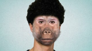 Illustration for article titled Man Receives First Baboon-Face Transplant