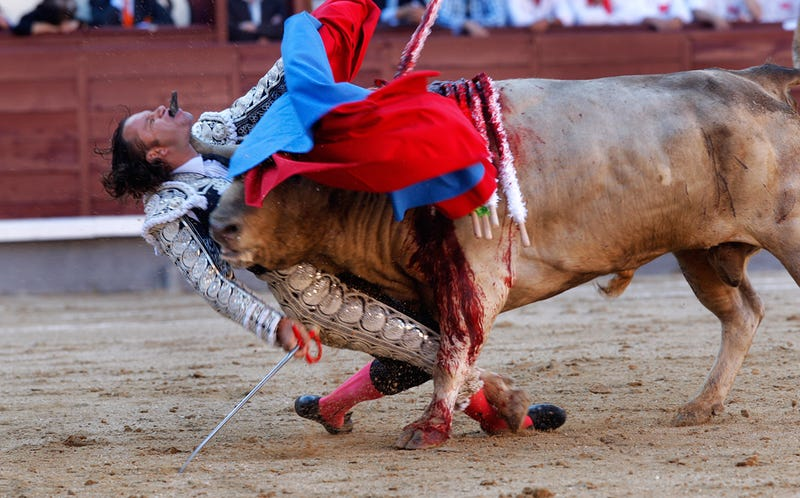 Illustration for article titled Bullfight Goes Horribly Right, For Bull