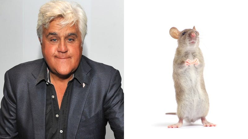 Illustration for article titled Lady Sues Jay Leno for Implying She Had Sex with a Rat