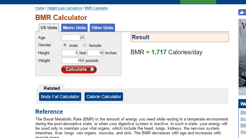 Calculate How Many Calories You Burn Every Day Without ...