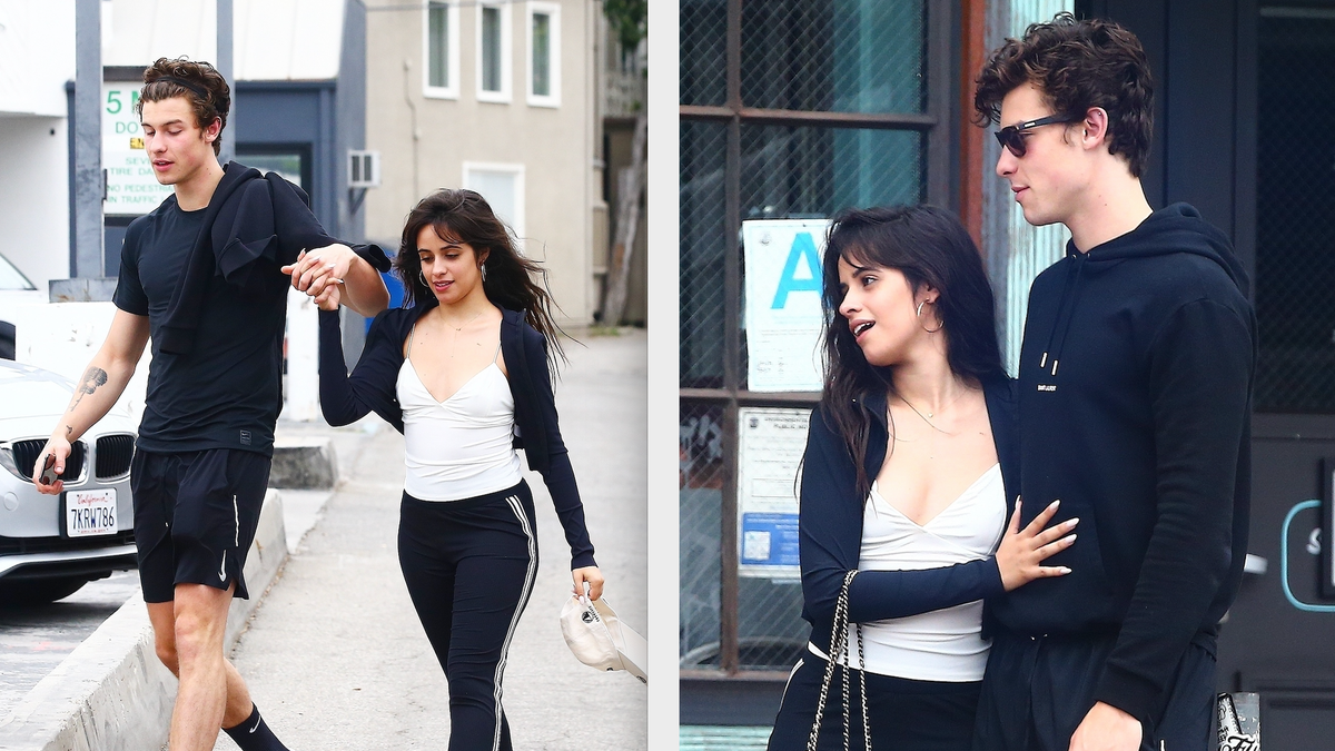 Are Camila Cabello and Shawn Mendes Dating?