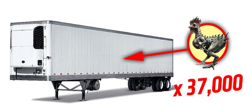 Illustration for article titled Truckload Of Leaking, Rotting Chicken Left At Truckstop In Montana