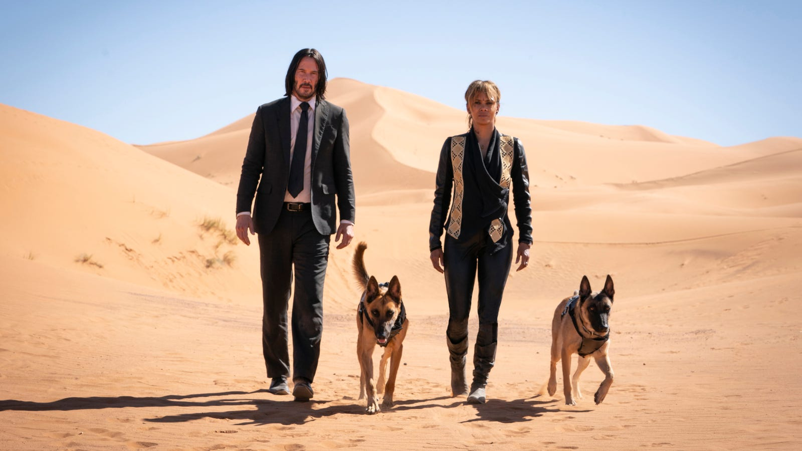 John Wick Is Getting a Female-Focused Spin-Off That Is Somehow Not About Halle Berry's Character