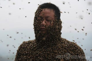 Illustration for article titled Covering Yourself with 460,000 Bees Looks Terrifying