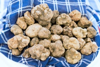 Illustration for article titled Total Goober Takes $300 Bite Out of White Truffle By Mistake