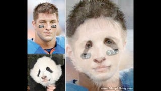 Illustration for article titled What If Tim Tebow Had A Baby With The Panda On Yao Ming's Lap?