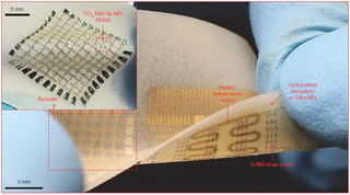 Illustration for article titled New flexible nanoelectronics for health monitoring, diagnosis and treatment