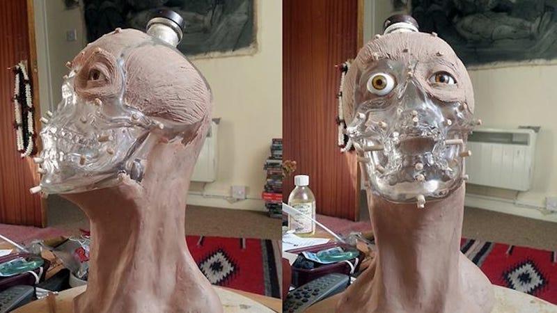 Illustration for article titled Forensic Artist Reveals the Face for that Skull-Shaped Vodka Bottle