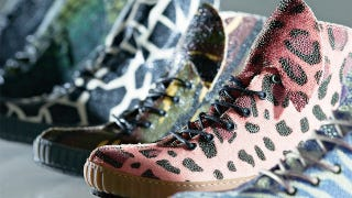 Illustration for article titled Transgenic sneaker company grows custom designs on genetically engineered stingrays