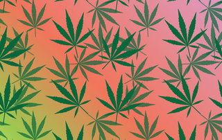 Illustration for article titled Names For Marijuana, Ranked
