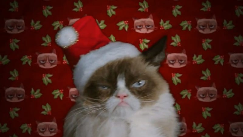 Illustration for article titled Grumpy Cat Christmas Movie Comes With Grumpy Cat Christmas Songs
