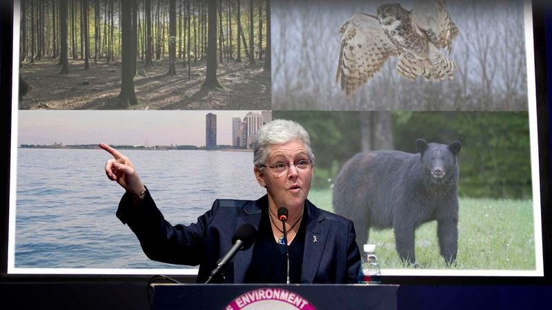 EPA administrator Gina McCarthy says her agency is fully committed to saving all types of flora and fauna, provided any of them still exist.