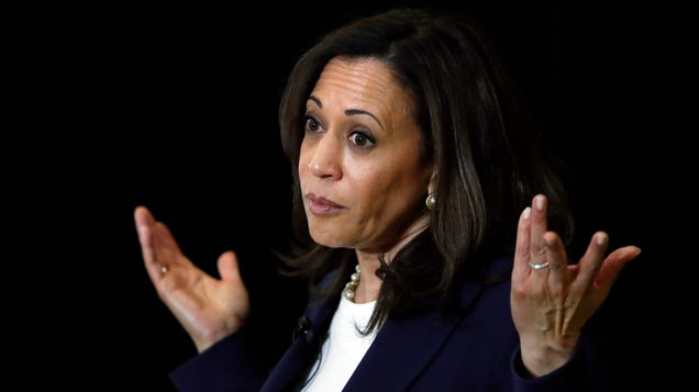 Kamala Harris Says  We Have to Seriously Take a Look At  Breaking Up Facebook