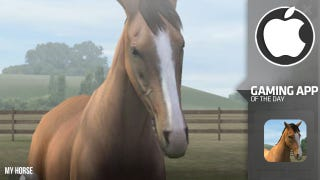 Illustration for article titled My Horse is Nintenhorse In all but Name