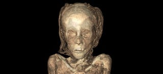 Illustration for article titled New Mummy X-Rays Let You Peer Right Inside Ancient Egyptian Bodies