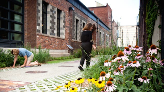 How Alleys Are Be ing Pathways to Urban Revitalization
