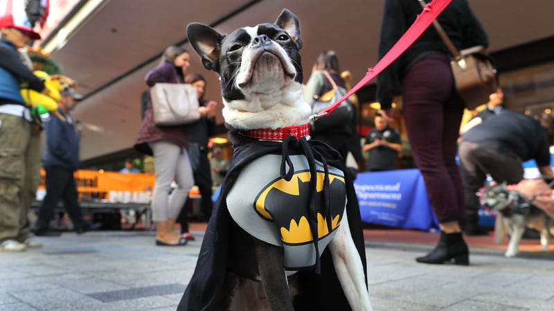 Popular famous person Batman to get his own star on the Hollywood Walk Of Fame
