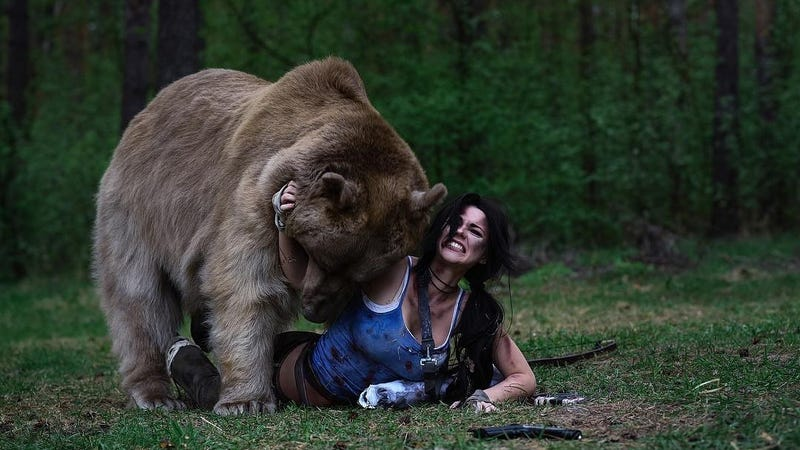 Illustration for article titled Lara Croft Cosplayer Poses With Actual, Giant Bear
