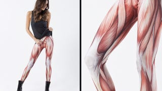 Illustration for article titled Muscle Leggings Prove Fashion Is More Than Skin Deep