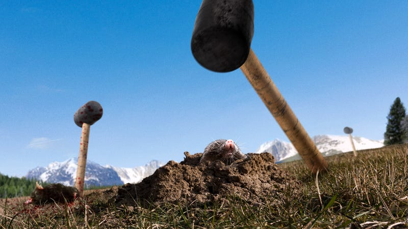Illustration for article titled Department Of Interior To Control Rising Mole Population By Releasing Mallets Into National Parks