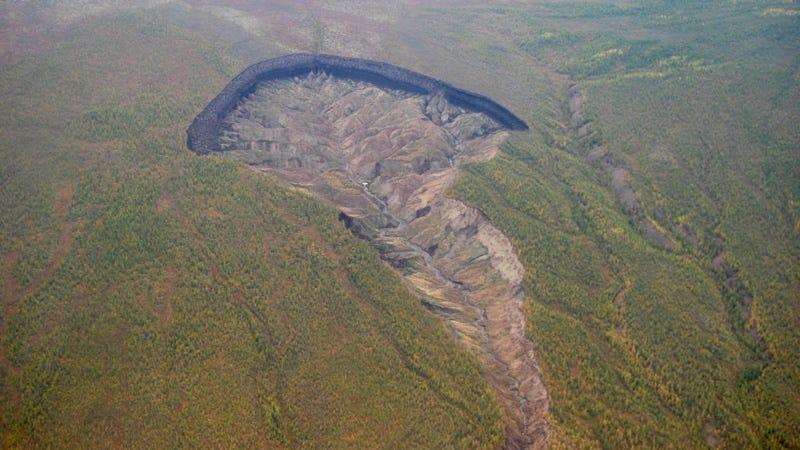 Imagen: Alexander Gabyshev / Instituto De Investigación De Ecología Aplicada Del Norte