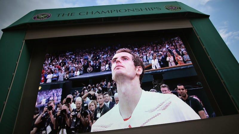 Illustration for article titled The Day Britain Finally Learned To Love Andy Murray For Andy Murray