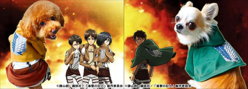 Illustration for article titled Dogs Get Official Attack on Titan Costumes