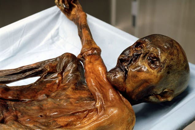Ötzi the Iceman Was Making Prosciutto Over 5,000 Years Ago
