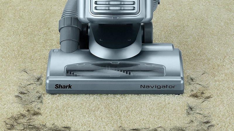 Shark Navigator Vacuum, $90