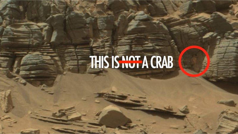 Illustration for article titled NASA Totally Found an Alien Crab on Mars and Didn't Tell Anybody