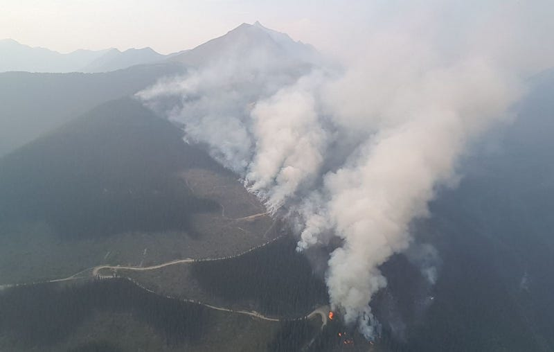 Wildfire G31735 in the Robson Valley on August 10.