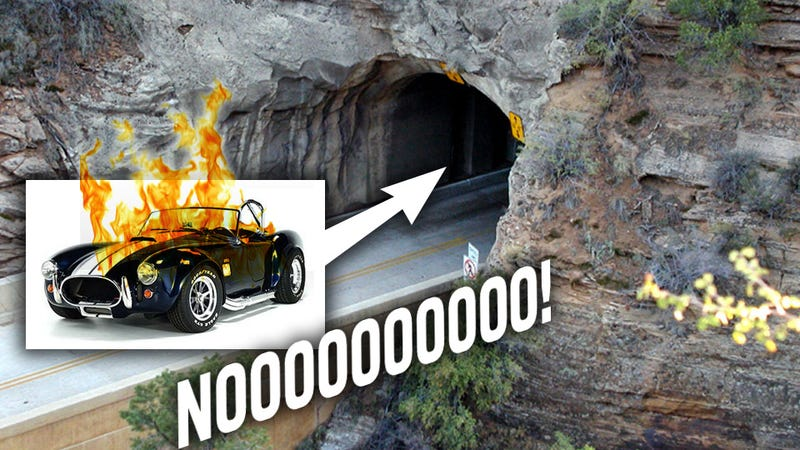 Illustration for article titled $800,000 Shelby Cobra Burns Inside Mountain